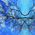 Journey into Fragility: Il viaggio di Maria Rebecca Ballestra nelle fragilità del mondo
